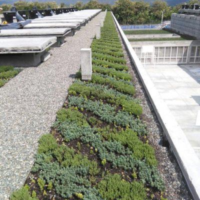 Imagen 3 proyecto carcel tulua - techo verde