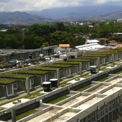 Imagen 5 proyecto carcel tulua - techo verde