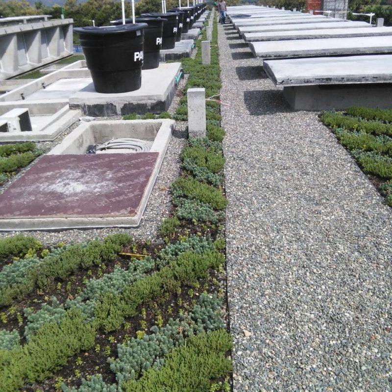 Imagen proyecto carcel tulua - techo verde