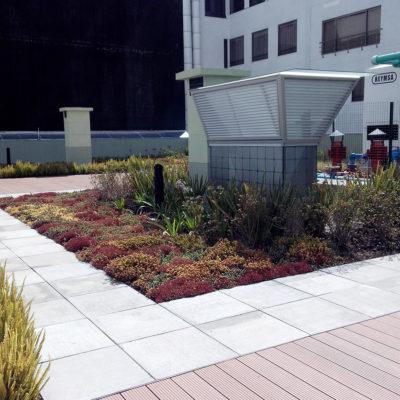 Imagen 3 proyecto emporium 96 - techo verde