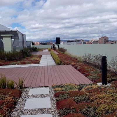 Imagen 4 proyecto emporium 96 - techo verde
