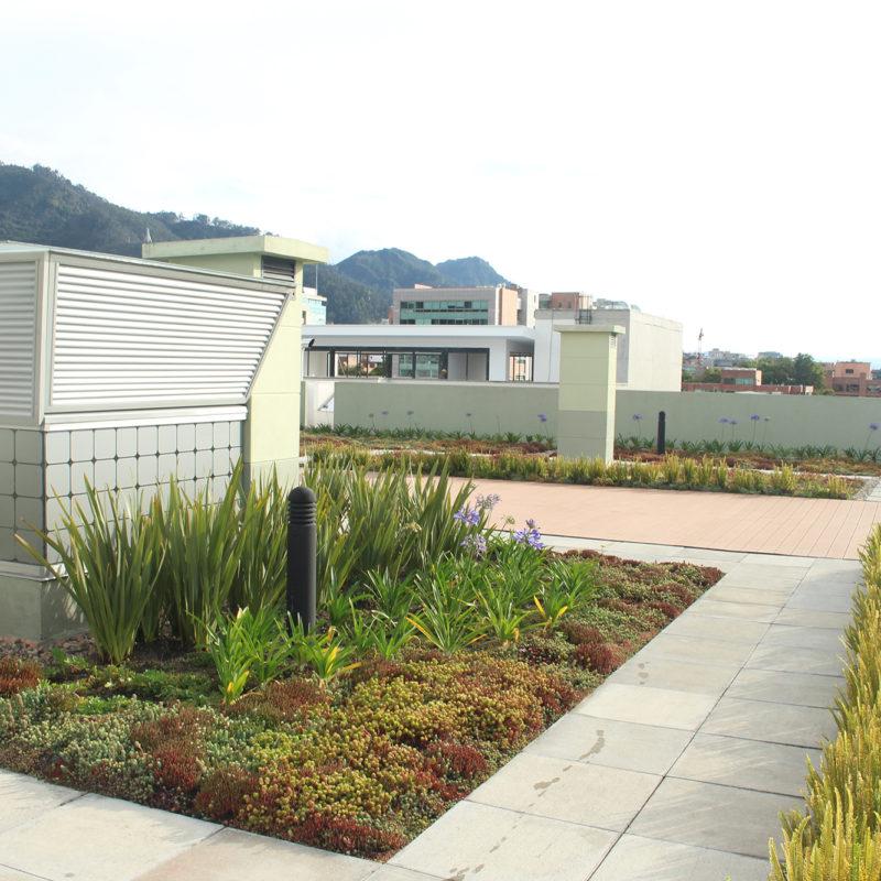 Imagen proyecto emporium 96 - techo verde