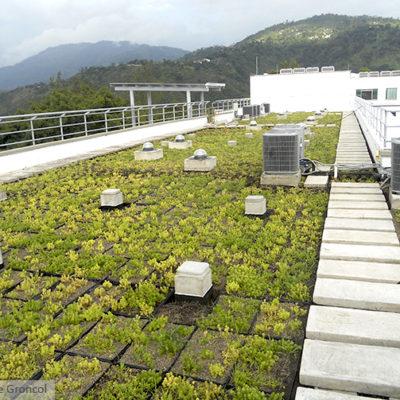 Imagen 1 proyecto uis - muro verde