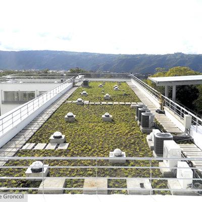 Imagen 2 proyecto uis - muro verde